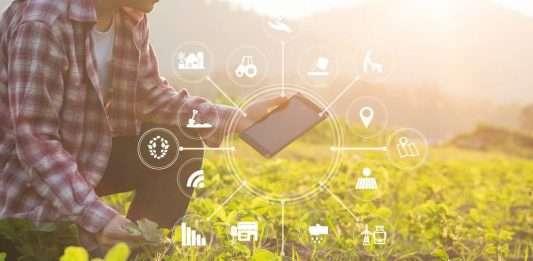 La transformación digital cambia la agricultura con aplicaciones de IoT Blog de redes y telecomunicaciones